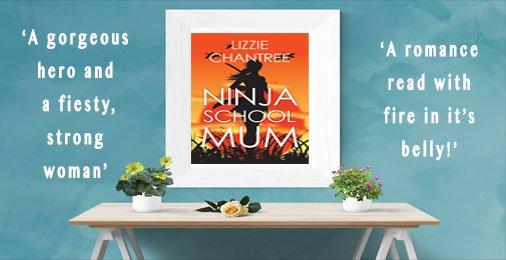Ninja ad